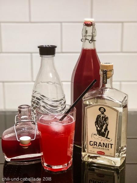 Zutaten für den SWhrub mit Gin