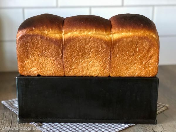 Neufundland Brot 1